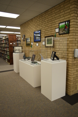 Art in the Library Exhibition Fall 2017