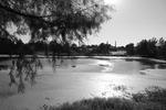 Schuman Lake by Ethan Stiles